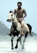 Naked men and horses, foto 3, hot ponyride